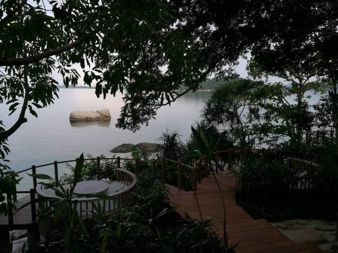pulau cempedak 11