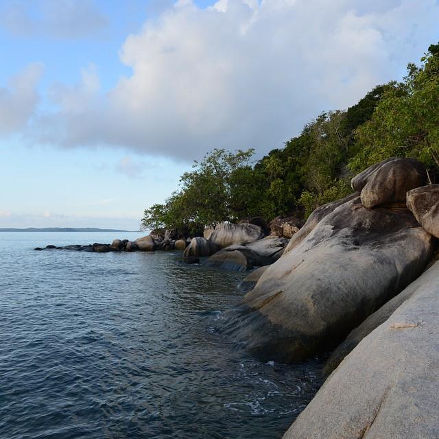 pulau cempedak 31